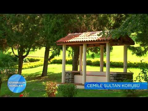 İstanbul'un Koruları | Cemile Sultan Korusu