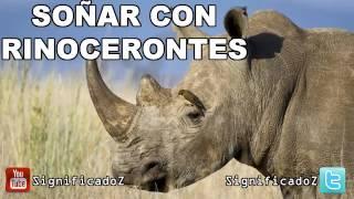 Significado de Soñar con Rinocerontes