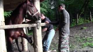 Ковка Черкеса, часть 1. Подготовка к походу на Тхач. Адыгея 2013