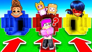 DON'T CHOOSE THE WRONG MYSTERY TUNNEL IN MINECRAFT! (MIRACULOUS LADYBUG, EVIL LANKYBOX, AND MORE!)