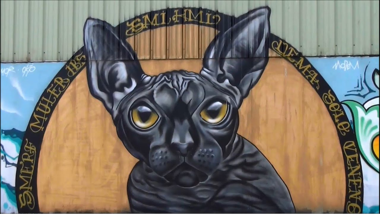 Graffiti ; Lorient ; Chat Gris ; Street Art ; Peinture Sur