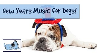 New Year's Eve Special! Keep your Dog Happy and Calm During Fireworks and Firecrackers!