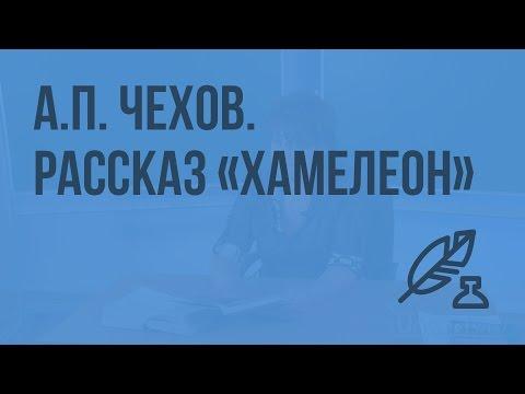 А.П. Чехов. Рассказ Хамелеон. Хамелеонство как социальное явление
