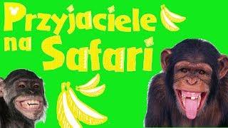 Przyjaciele na safari #53 • Disney • Pawianek Stasio • Encyklopedia zwierząt z zabawkami