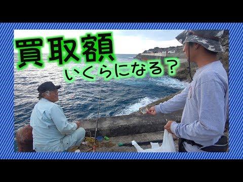 釣り人全員から魚を買い取った結果…!! #9 北大東島編