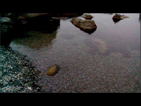 Алупка: Вечерний каменный пляж