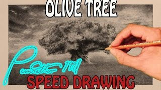 Olive Tree Speed Drawing