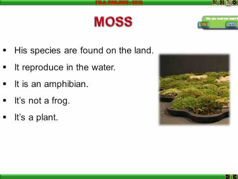 STRUCTURE OF LIVING ORGANISM.wmv
