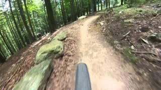 Single Track Hejnicky Hreben @ Singltrek Pod Smrkem, Czech Republic