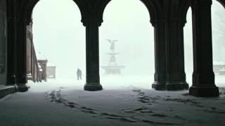 Blizzard 2016 footage Central Park BMPCC