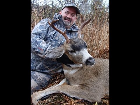 Sitka Blacktail Deer Hunting In Kodiak Alaska