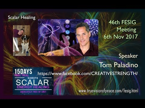 46th FESIG Meeting with Tom Paladino of Scalar Healing
