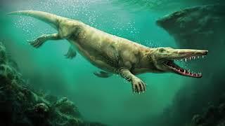 Ewolucja waleni. Jak wieloryby stały się największymi zwierzętami w historii Ziemi