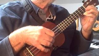 The Alley Cat Song - Solo Ukulele - Colin Tribe on LEHO soprano LHS MM