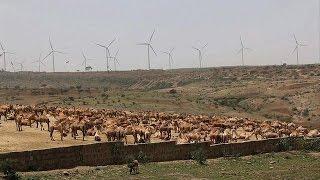 Ethiopia opens largest wind farm in sub-Saharan Africa