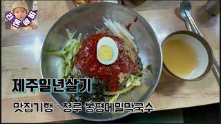 맛집기행 : (서귀포)청루 봉평메밀막국수  Delici…