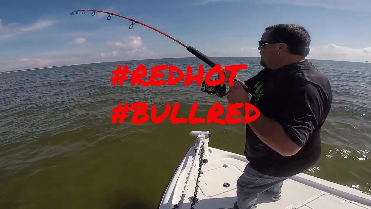 Incredible bull redfish action in gulf shores alabama for Capt al fishing report
