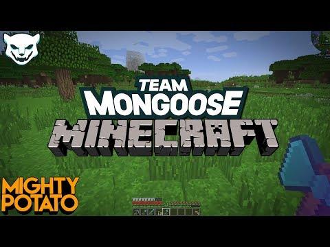 Team Mongoose SMP - Witch Pranks [Part 17]