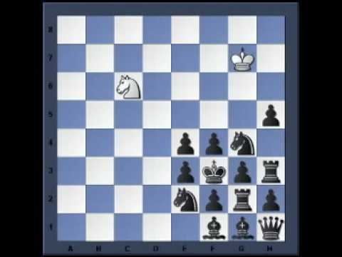 World Record -  #14  King and Knight against all (after Dr. K.Fabel 1950)