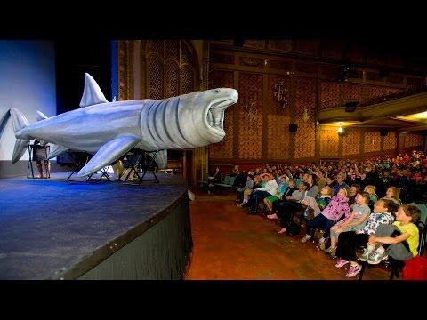 Life-sized Inflatable Basking Shark