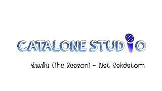 ฉันเห็น (The Reason) - Nat Sakdatorn (Piano Cover) | CATALONE STUDIO