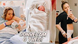 Primeiras 24 horas do Theodore, o primeiro dia do recém-nascido