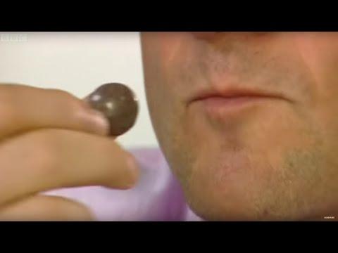 Why Do We Love Chocolate? | Earth Lab
