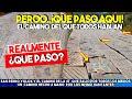 Video de San Pedro Yólox
