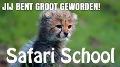 Safari School (Jij bent groot geworden!)