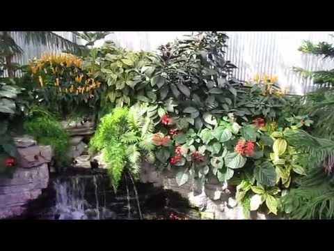 Jardin Botanique de Montréal .