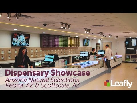 Dispensary Showcase: Arizona Natural Selections in Peoria and Scottsdale, AZ