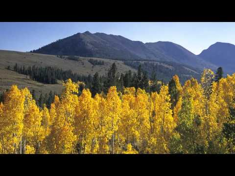 Photographing The Fall Colors Of The Eastern Sierra
