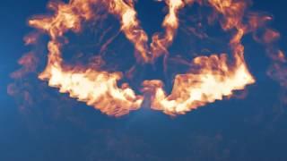 Custom Logo Reveal - Fire Wings Logo Reveal
