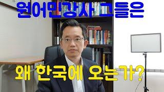 원어민 영어강사 그들은 왜 한국에 오는가?