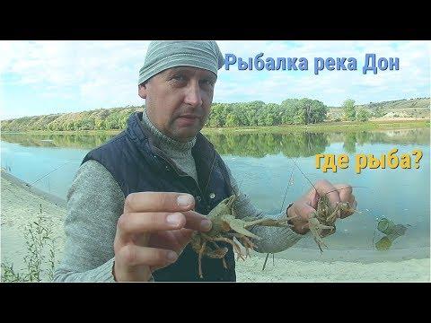 Рыбалка река Дон.Волгоградская обл.часть 2 Где рыба?