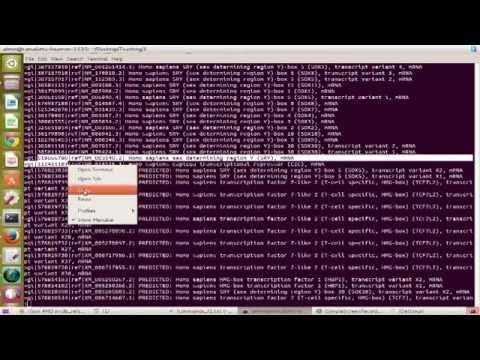 beginner bioinformatics helpful commands when dealing with fasta files