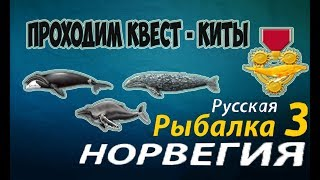 Русская рыбалка 3.99 Квест (Киты)