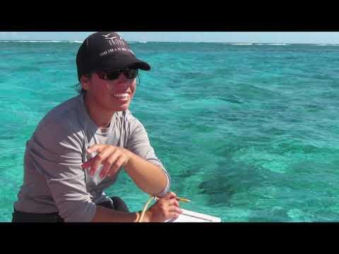 Gender and the Ocean | World Oceans Day Online Portal