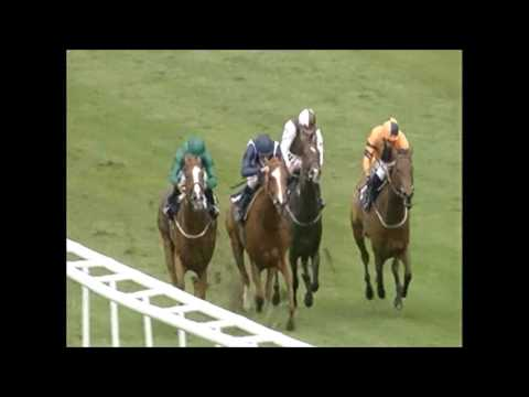 Raven's Lady wins at Newmarket under Ryan Moore - 30/06/17