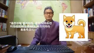 ★용띠 총정리★ 용띠나 음력3월 용달생은 주목하라!!!