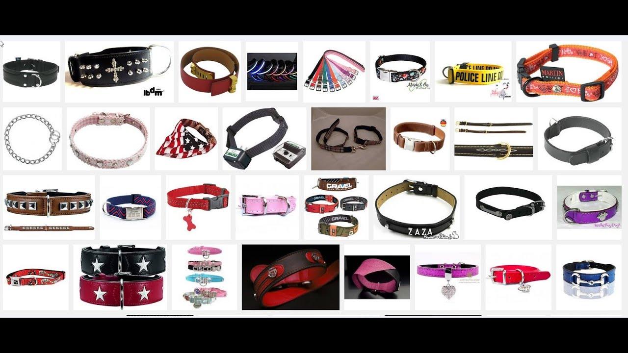 Comment faire pour choisir le collier du chien youtube - Fabriquer panier pour chien ...
