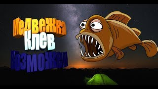 Русская Рыбалка 4   Взял Трофа на Медвежке и т.д