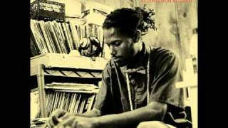 Damu The Fudgemunk - Colorful Storms [Final Mix 2005]
