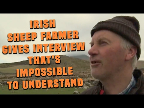 Irish Sheep Farmer With Incredibly Strong Accent Gives Interview That's Impossible To Understand