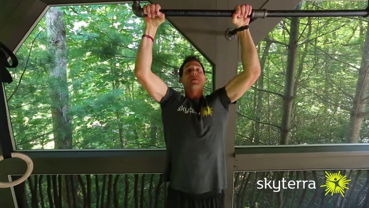 Movement Library: The Pull-Up and Progressions