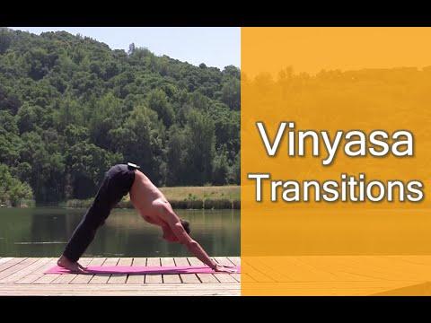Yoga Asana How to Do Vinyasa Transitions