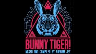 Sharam Jey - Like Nobody Does (Bruno Be & Dado Prisco Remix) - BTLP004