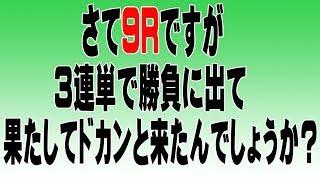【ヤング競馬予想研究会】中山、阪神開催で5万円使ってどこまで増やせるかやってみた。その⑤
