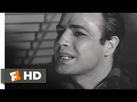 I Coulda Been a Contender  On the Waterfront 68 Movie  1954 HD