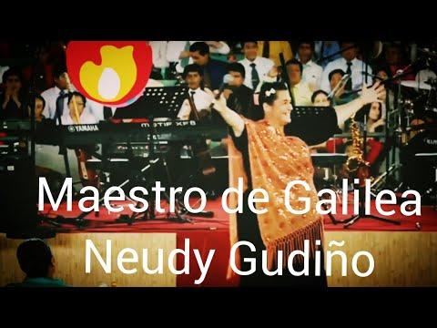 Neudy Gudiño Maestro